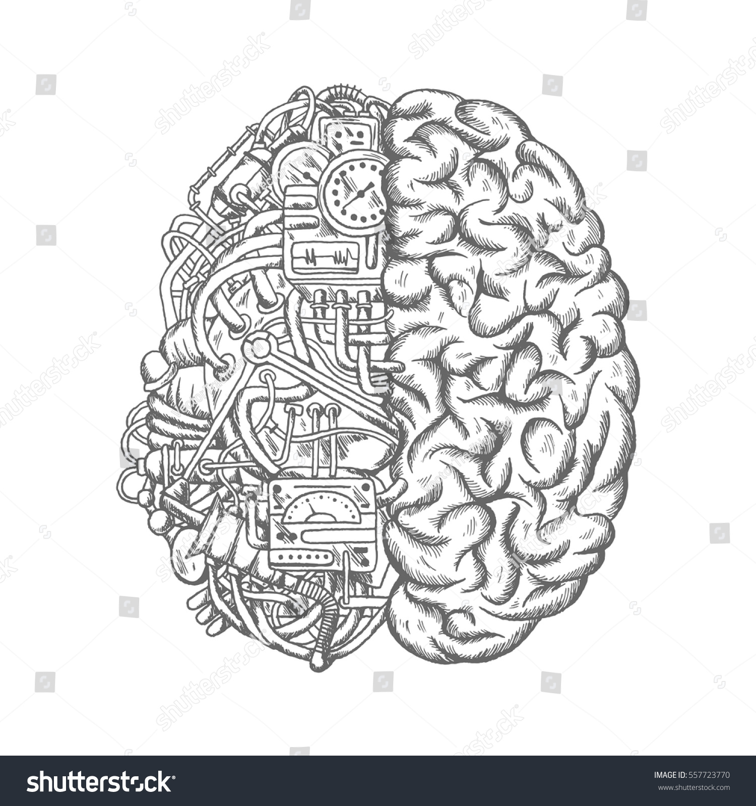 Brain Cyborg Sketch Human Brain Half Stock Vector Royalty Free