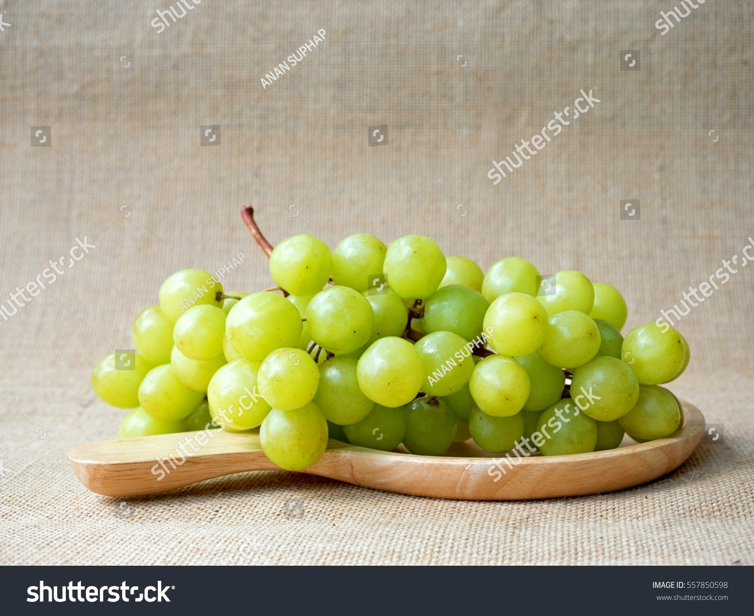 green grapes(  Vitis vinifera Linn) #557850598