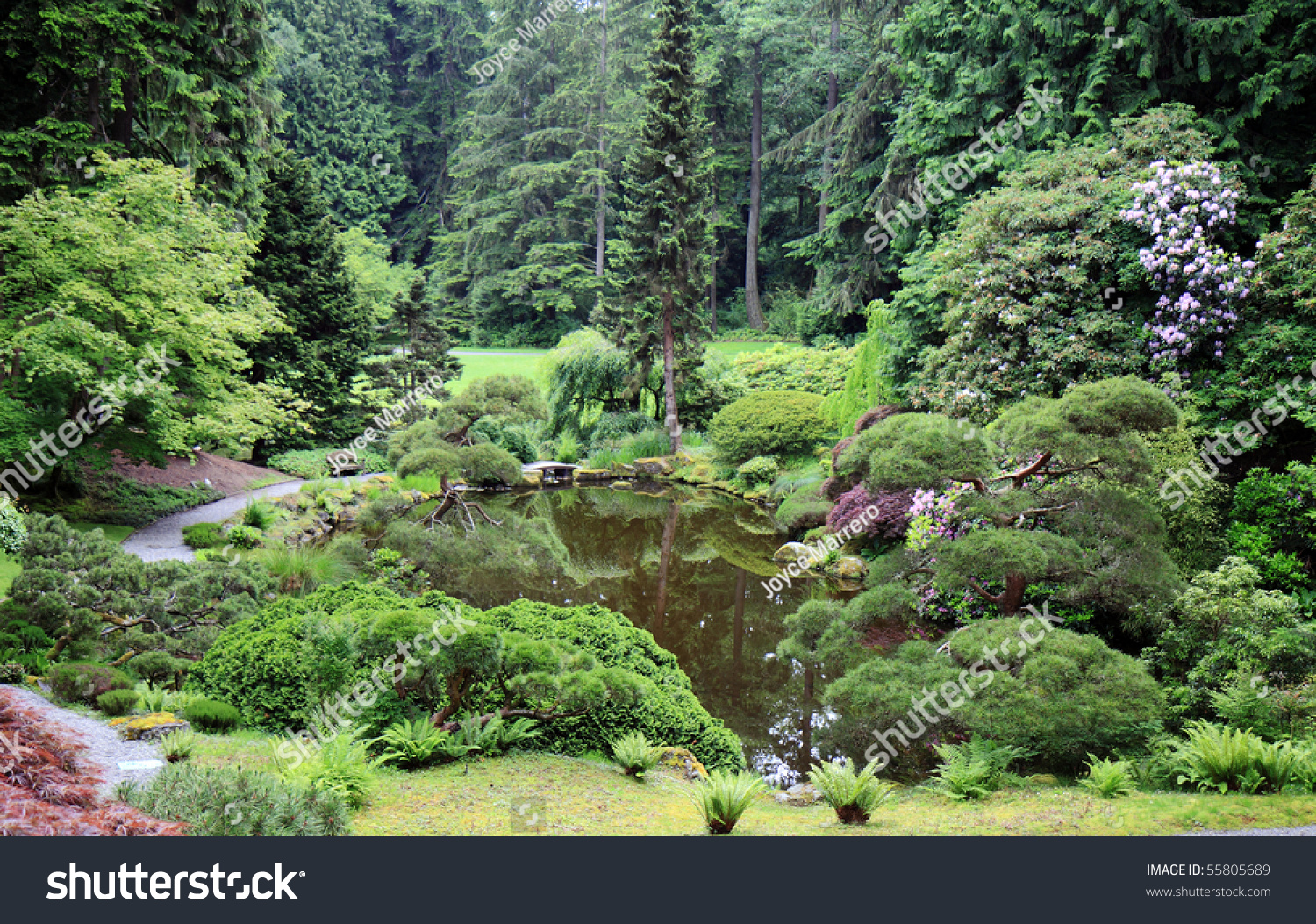 Japanese style garden with reflective pond stock photo for Japanese style pond