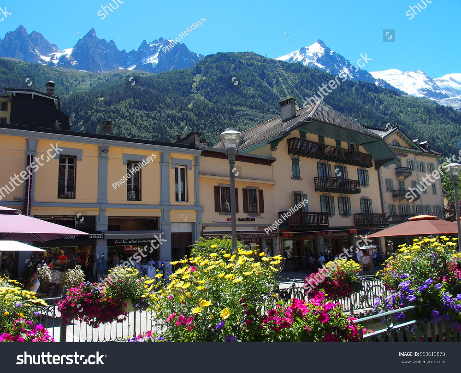 Chamonix mont blanc france europe on stock photo 558613873 chamonix mont blanc france europe on july 2016 colorful flowers in resort travel izmirmasajfo Choice Image