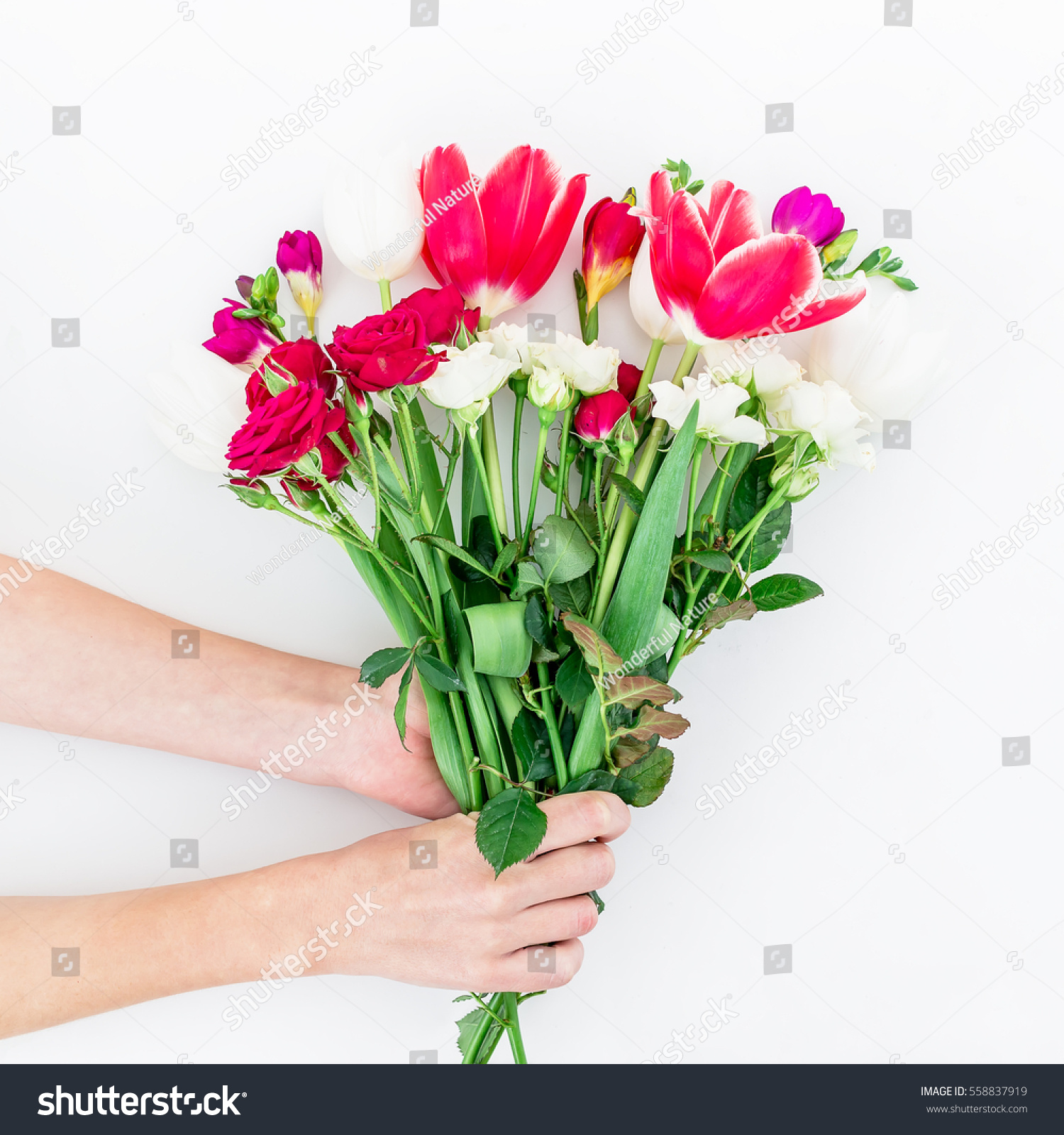 Bouquet Beautiful Flowers Hands Isolated On Stock Photo (Download ...