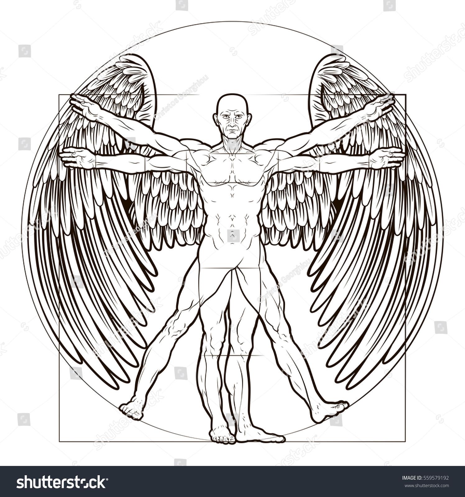 Vitruvian Man Angel Figure Like Leonard Stock Vector (Royalty Free ...