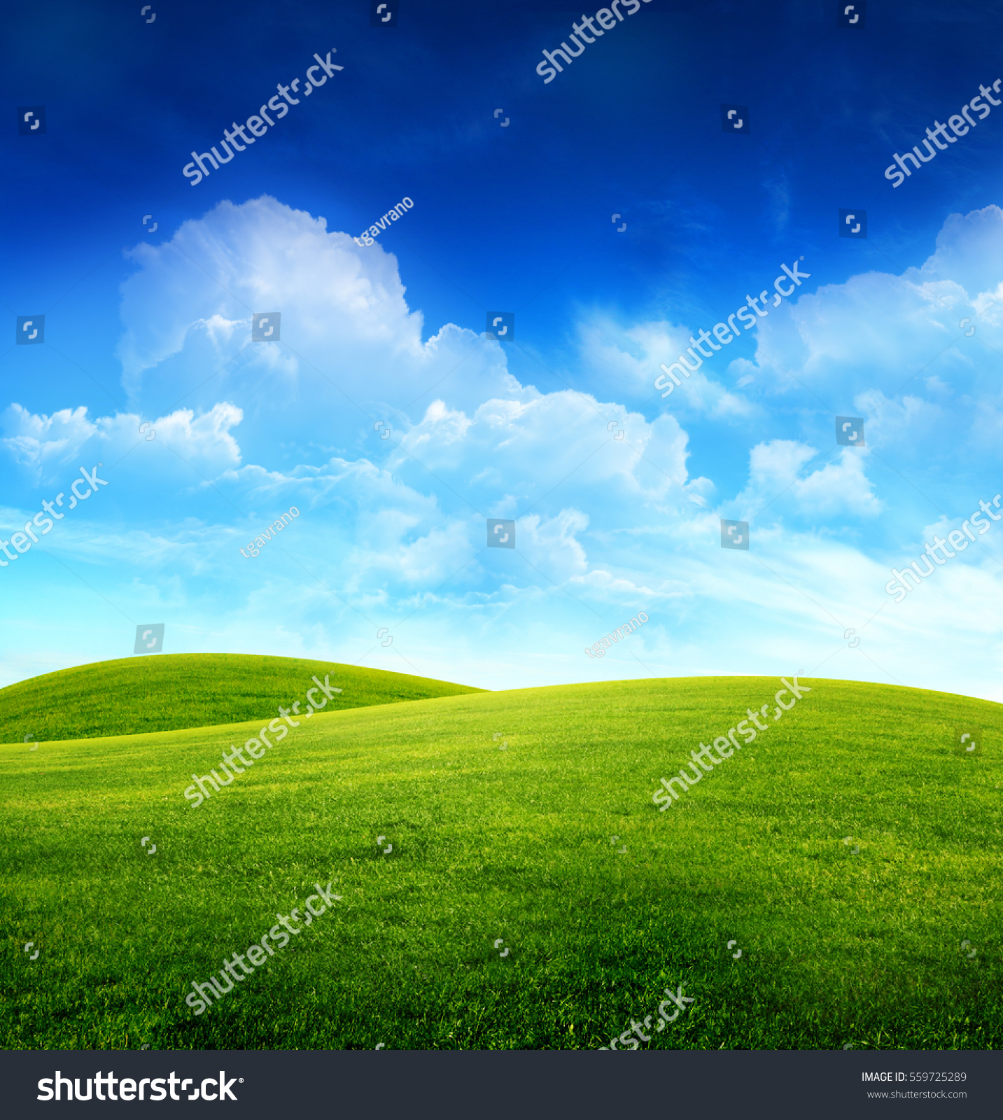 green grass field on small hills stock photo (edit now)- shutterstock