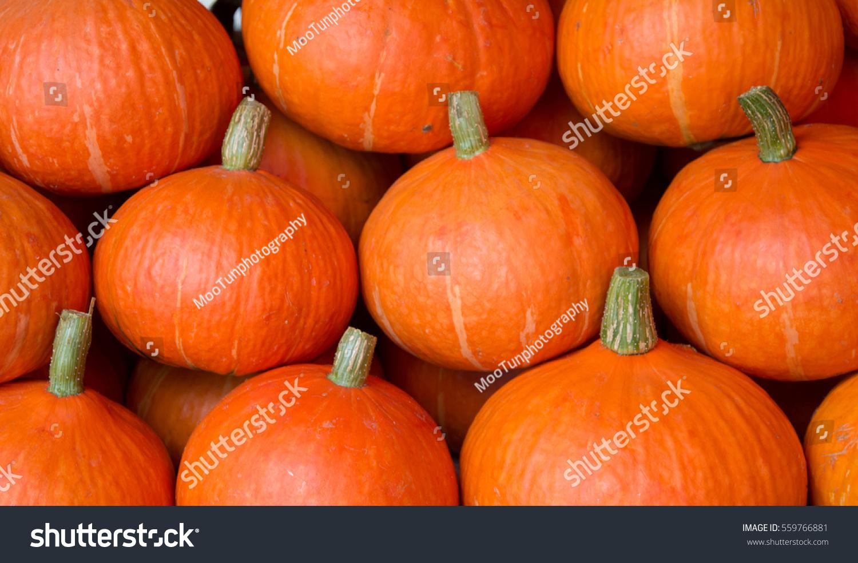 Why is a pumpkin useful? 75