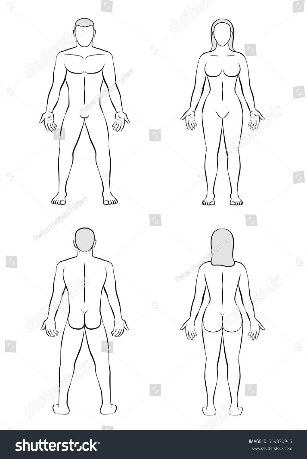 Man Woman Posterior Anterior View Outline Stock Vector ...