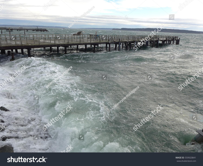 Fishing tide chart the best fish 2018 tide charts paddling nvjuhfo Gallery