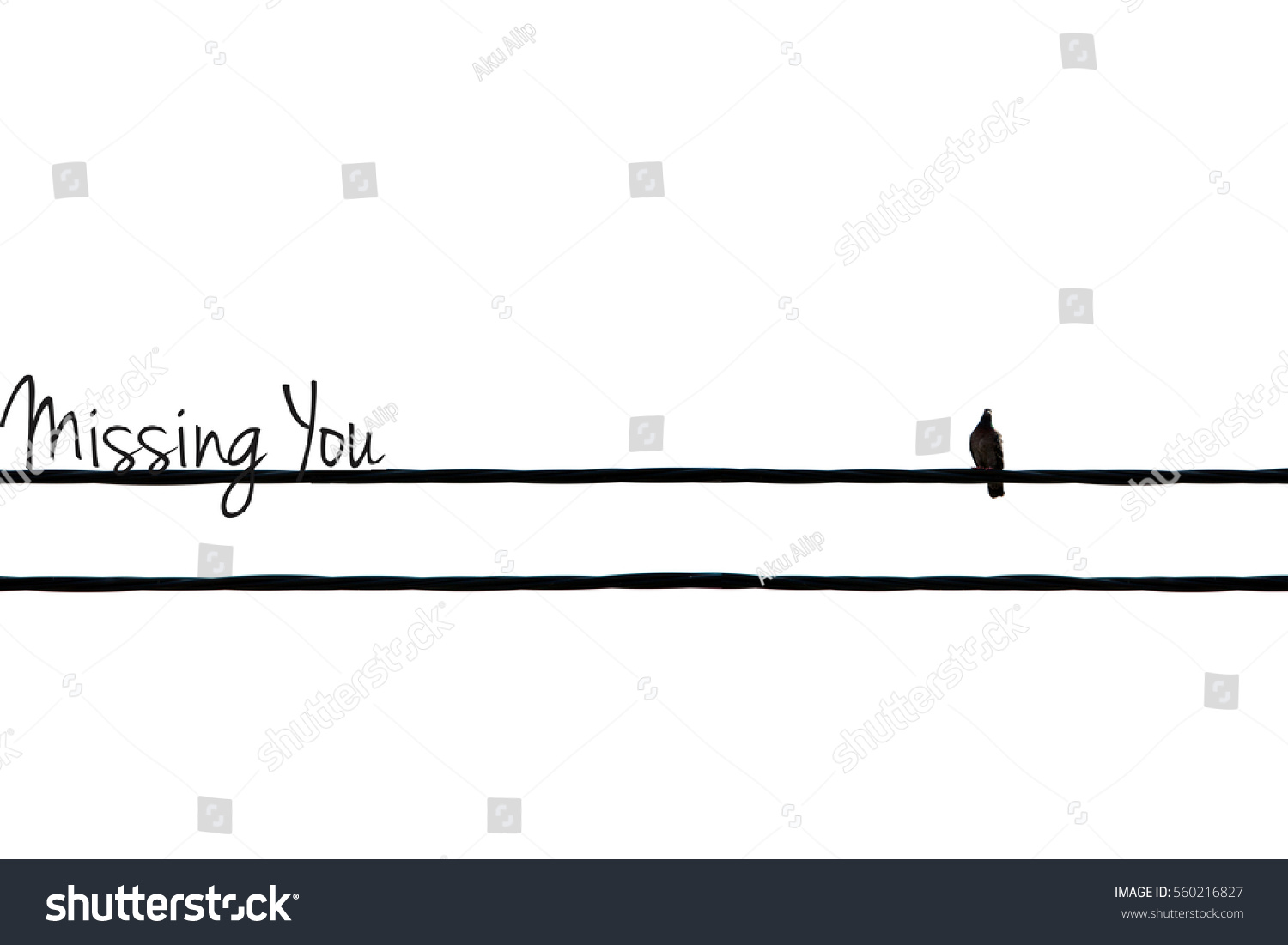 Concept Image Single Bird On Wire Stock Photo 560216827 - Shutterstock