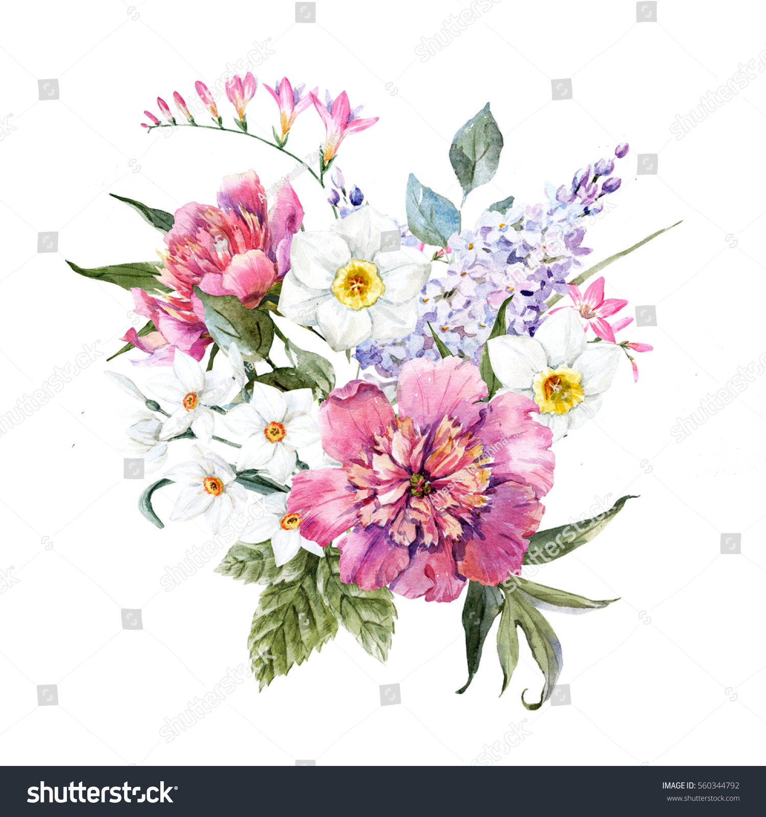 watercolor illustration spring floral bouquet white stock