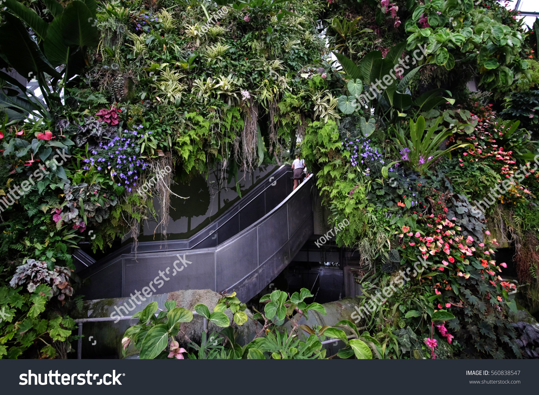 singapore jan 2016 winter garden singapore stock photo 560838547