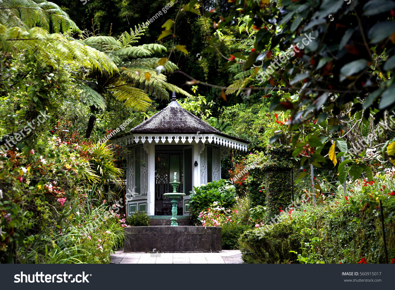 Garden And Flowers In La Maison Folio, Hell Bourg, La Reunion Island,
