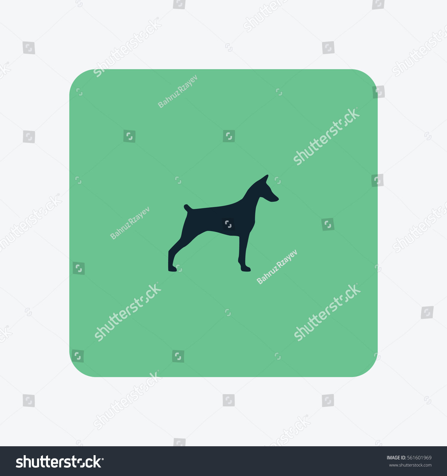 doberman icon silhouette vector illustration