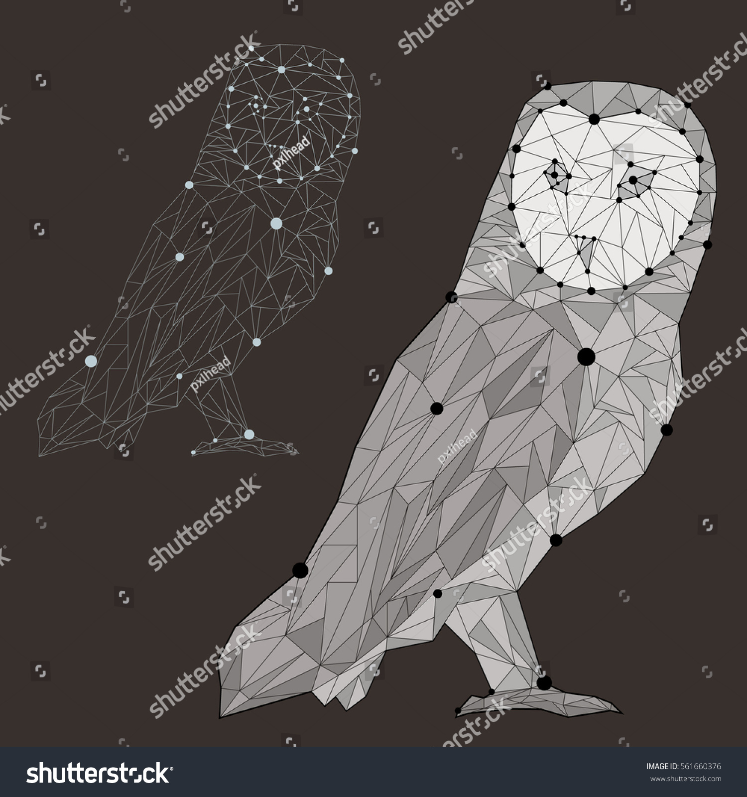 Vector Illustration Polygonal Owl Two Colors Stock Vector ... - photo#44