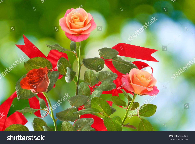 Beautiful flowers on green background many stock photo edit now beautiful flowers on a green background many beautiful flowers roses in the garden of flowers izmirmasajfo