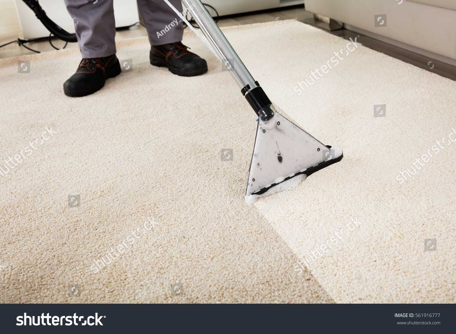 Close-up Of A Person Cleaning Carpet With Vacuum Cleaner #561916777