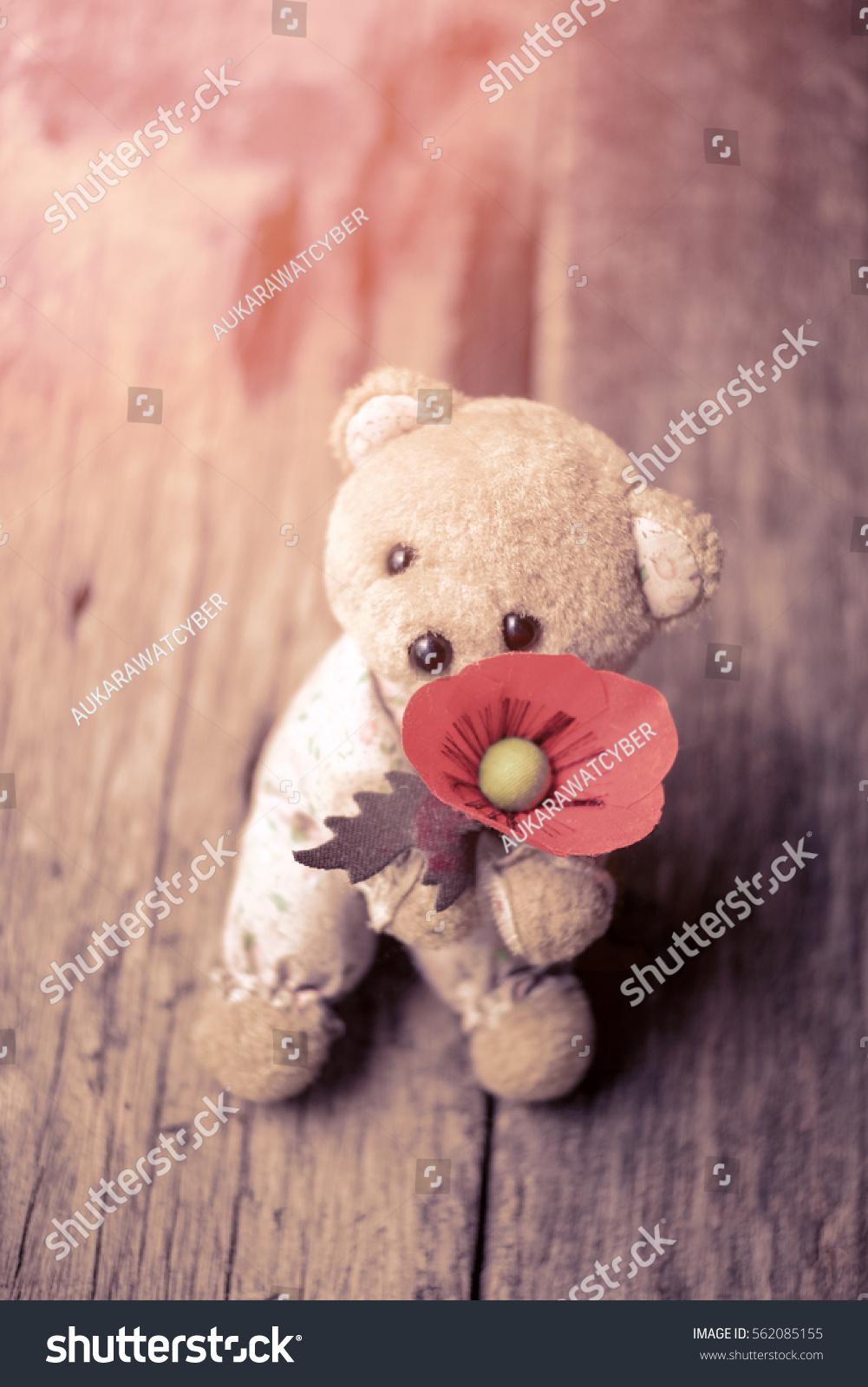 Cute Teddy Bear Doll Red Poppy Stock Photo Edit Now 562085155