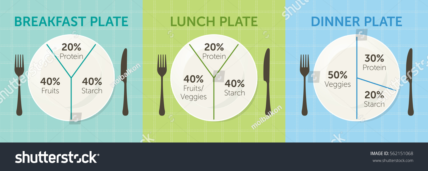 healthy eating plate diagram breakfast lunch stock vector royalty