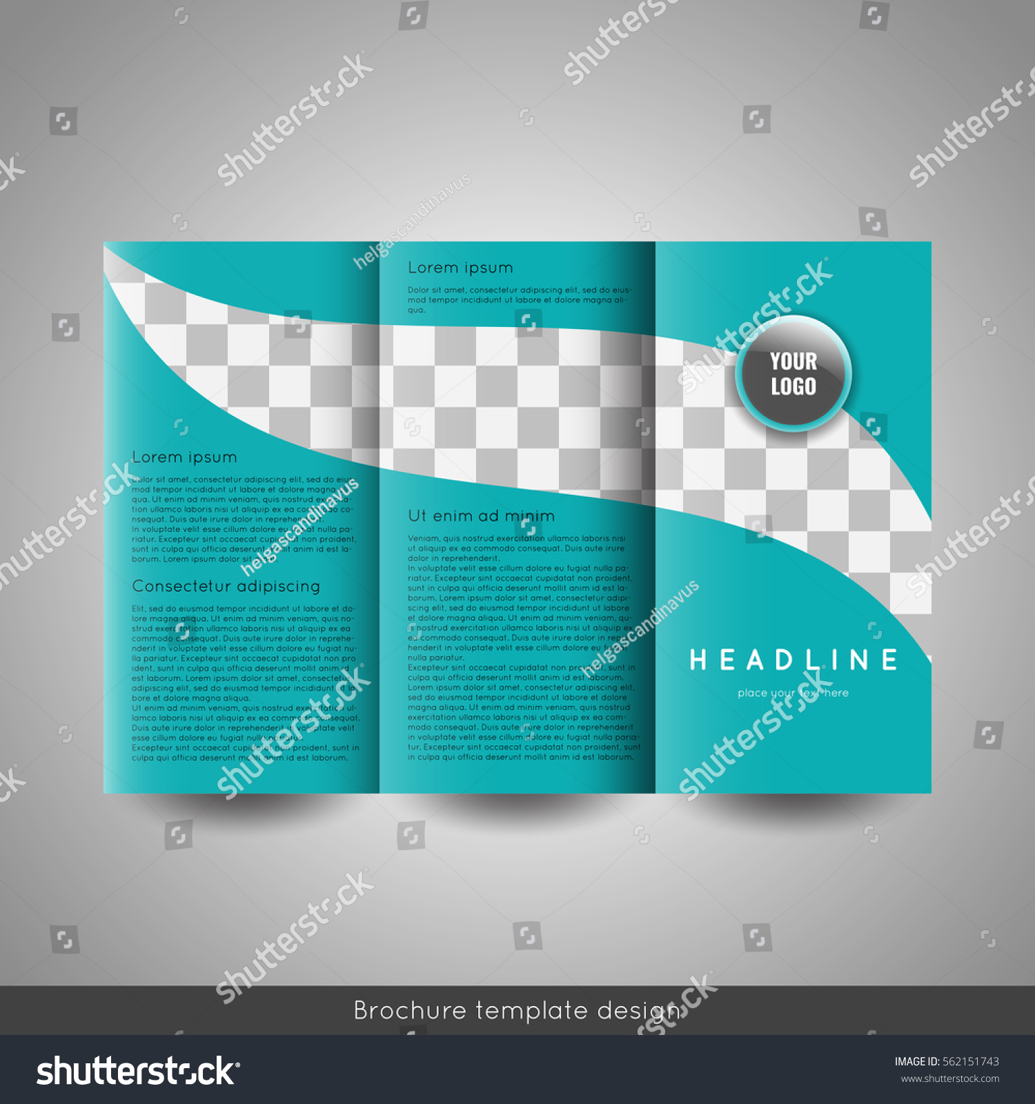 Corporate Trifold Business Brochure Template Circle Stock Vector