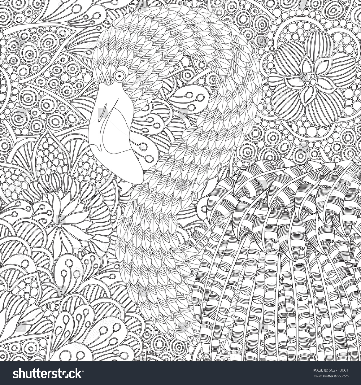 Fantastical Bird Coloring Book Amazing Flamingo With Feathers And Patterns Plumage Black