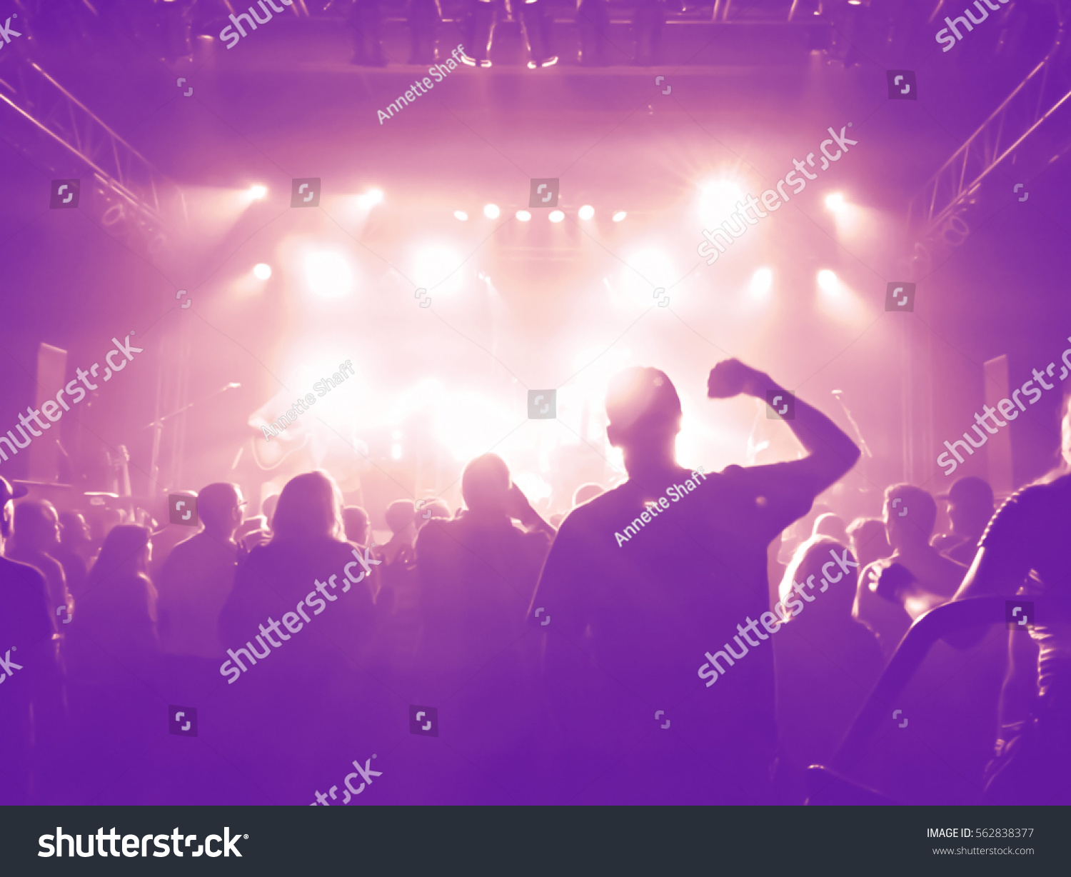 a crowd of people at a concert with a slight blur toned with a retro vintage instagram filter effect #562838377