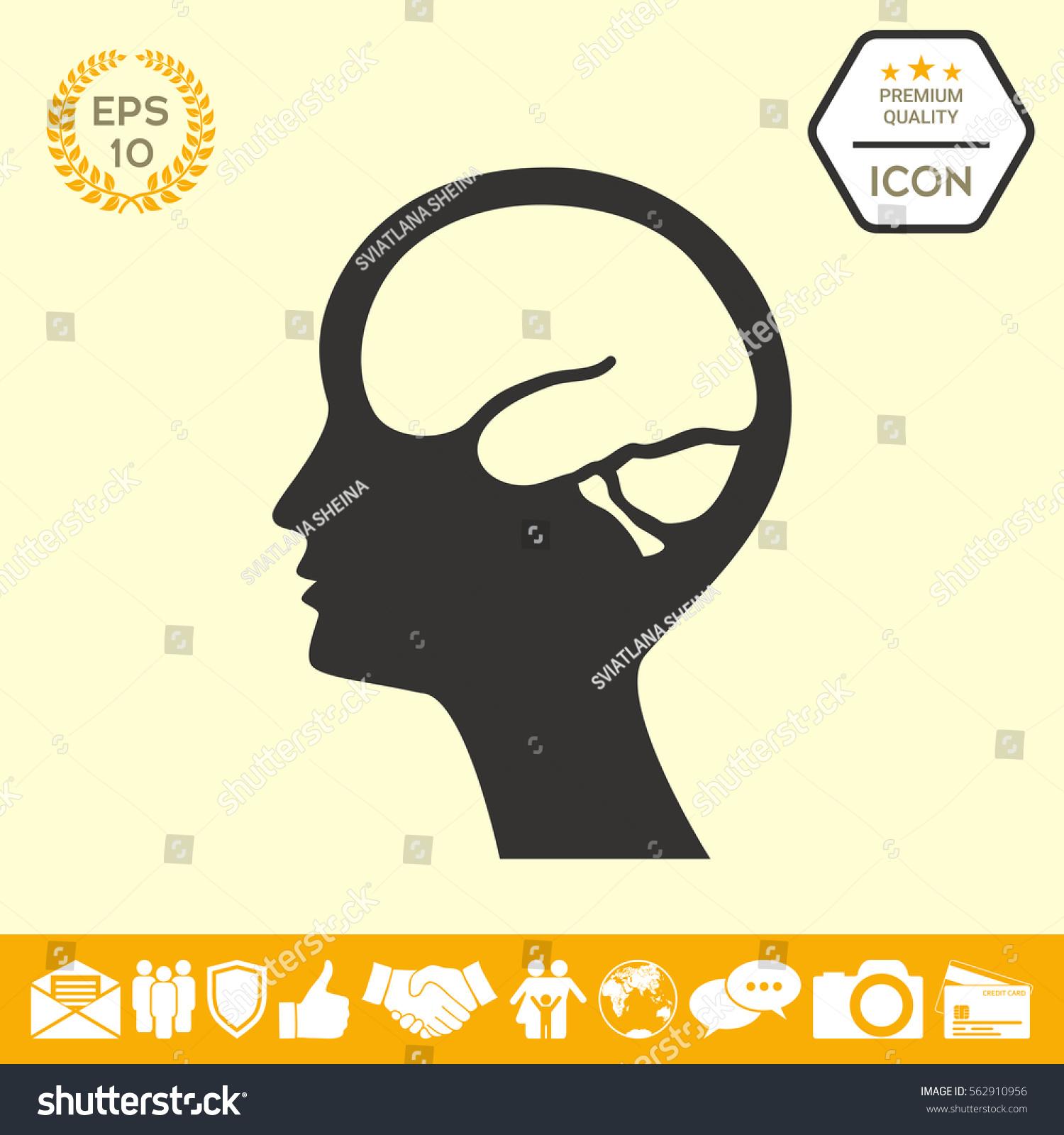 Head brain symbol icon stock vector 562910956 shutterstock head with brain symbol icon biocorpaavc Images