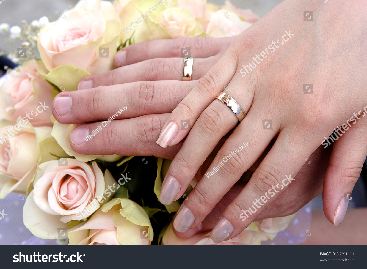 Two Hands Wedding Rings Stock Illustration 56291101 - Shutterstock