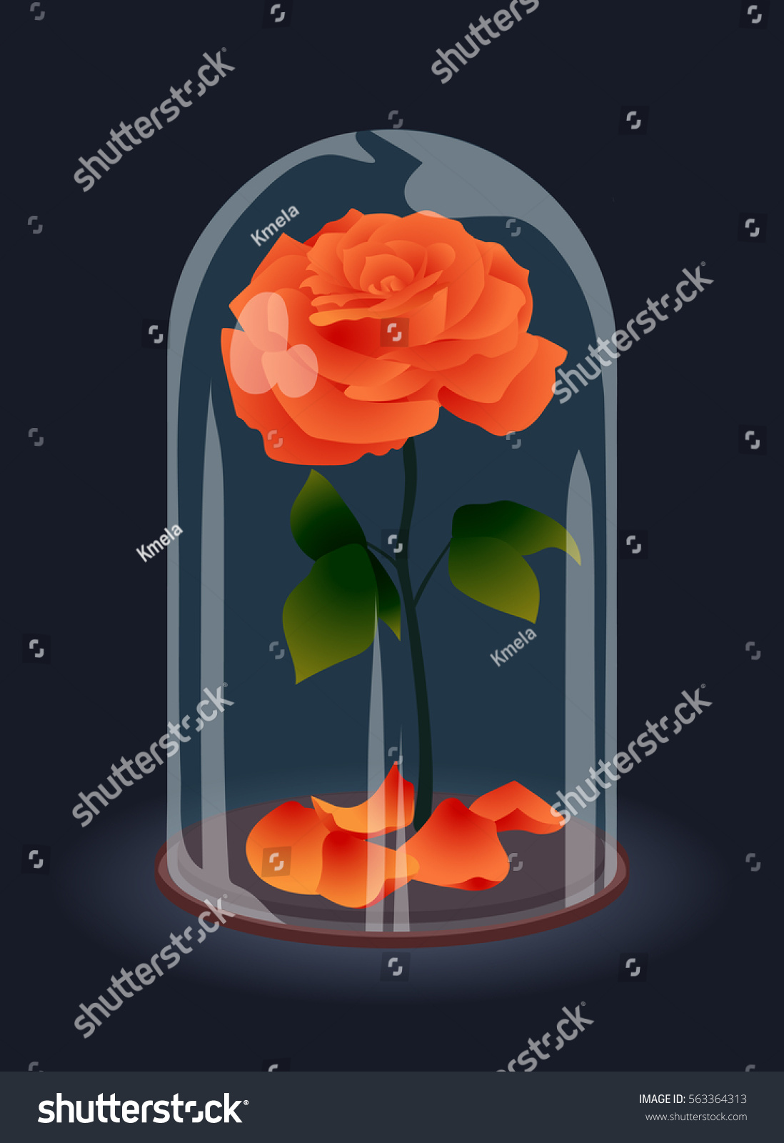 Beautiful elegant red rose under glass stock vector for Rose under glass