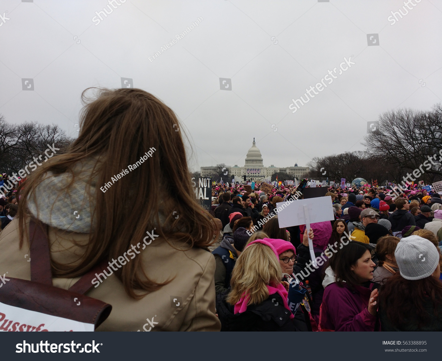 the womens march in washington dc against president donald trump The idea for the women's march on washington took  president-elect donald trump are  woman president this march is about letting trump know.
