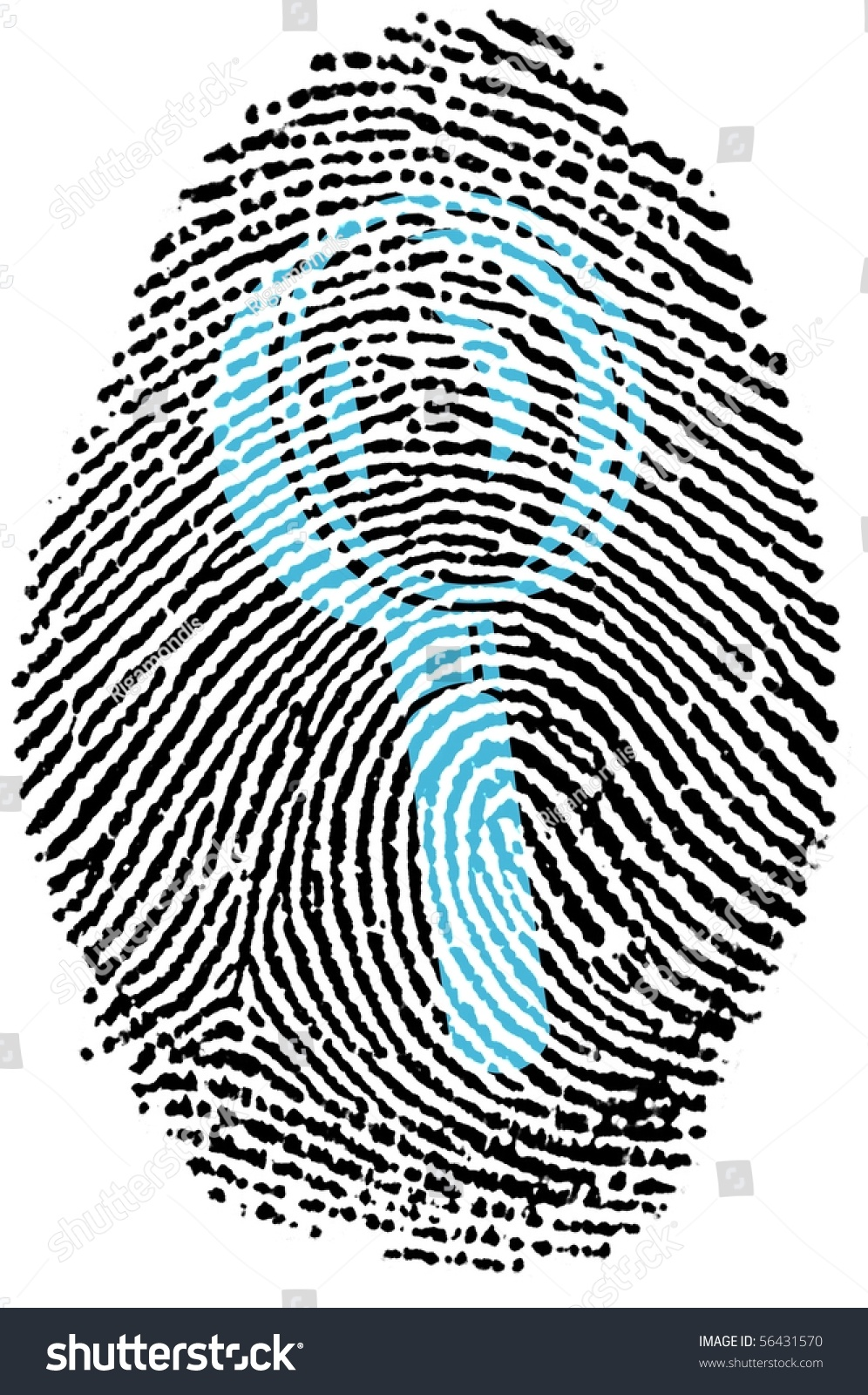 Fingerprint Stamp On White Paper For Search Capabilities