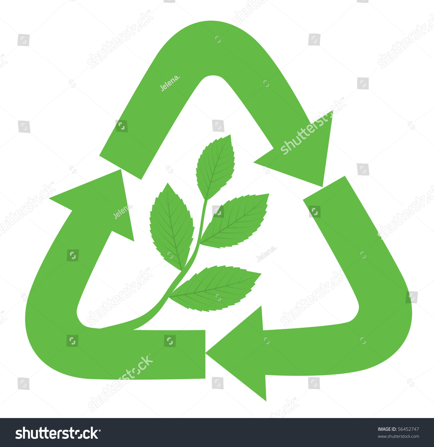 Recycle Sign Branch Leaves Inside Symbol Stock Vector Royalty Free