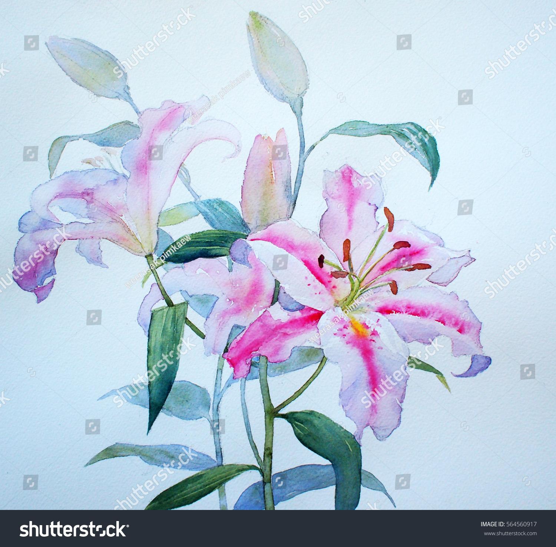 Lily Flowers Backgrounds Textures Watercolor Ez Canvas