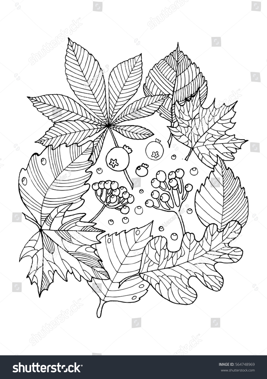 Tree Leaves Foliage Coloring Book Vector Stock Vector HD (Royalty ...