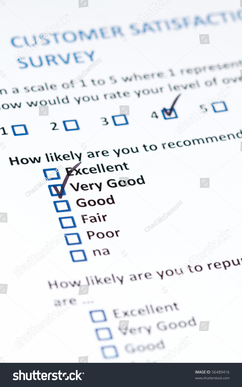 consumer satisfaction questionnaire