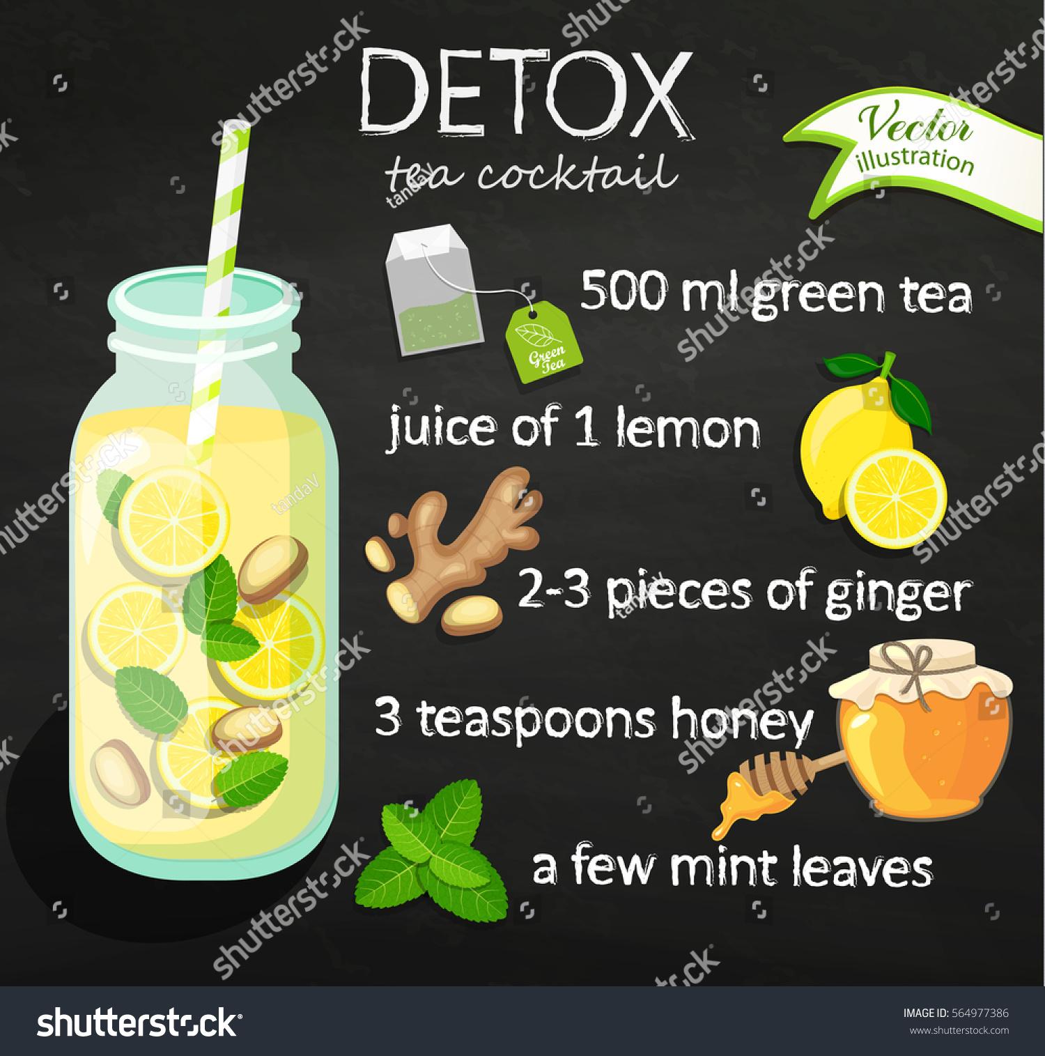 Recipe Detox Cocktail Green Tea Lemon Stock Vector Royalty Free
