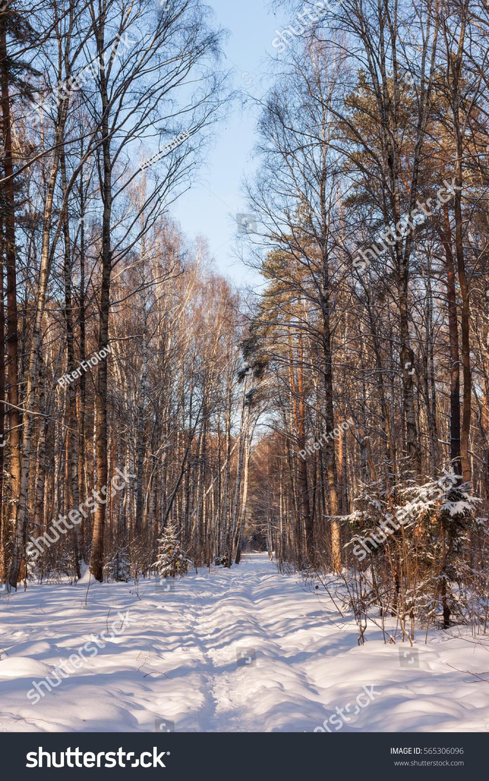 русский снег сайт запчасти на снегоход
