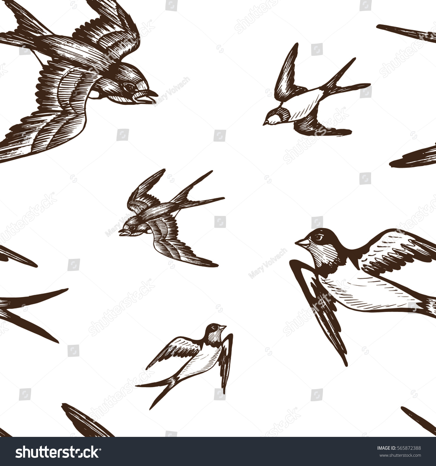 Set of sketches of flying swallows stock vector illustration - Vector Illustration Sketch Swallow Pattern Bird