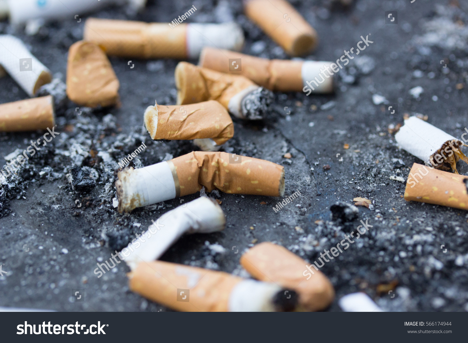 Hardly impaled Smoking butts did