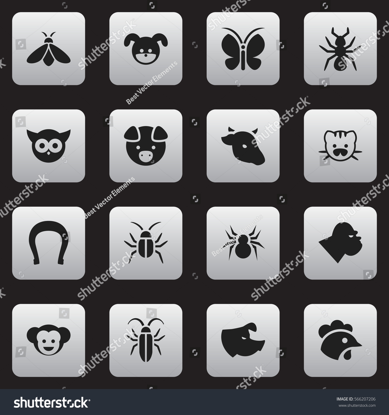 Set 16 editable animal icons includes stock vector 566207206 includes symbols such as hog bug rooster biocorpaavc