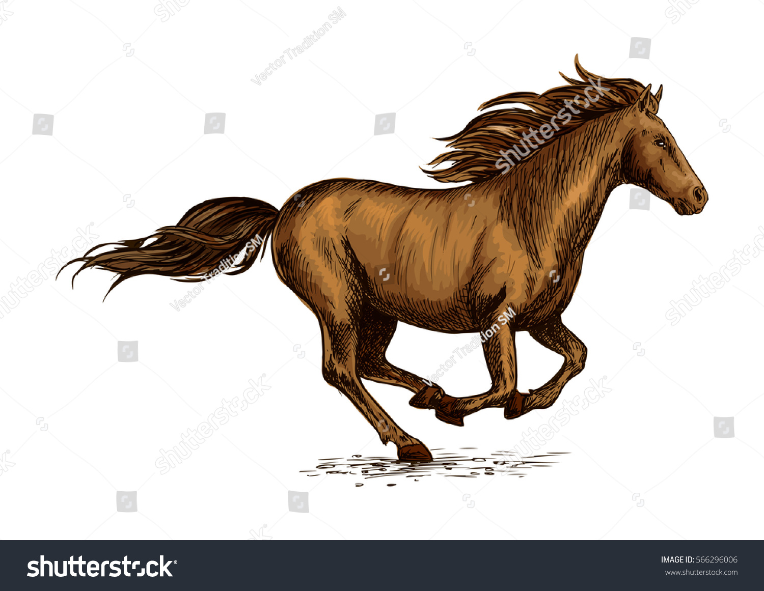 Brown Horse Running Field Sketch Galloping Stock Vector ...