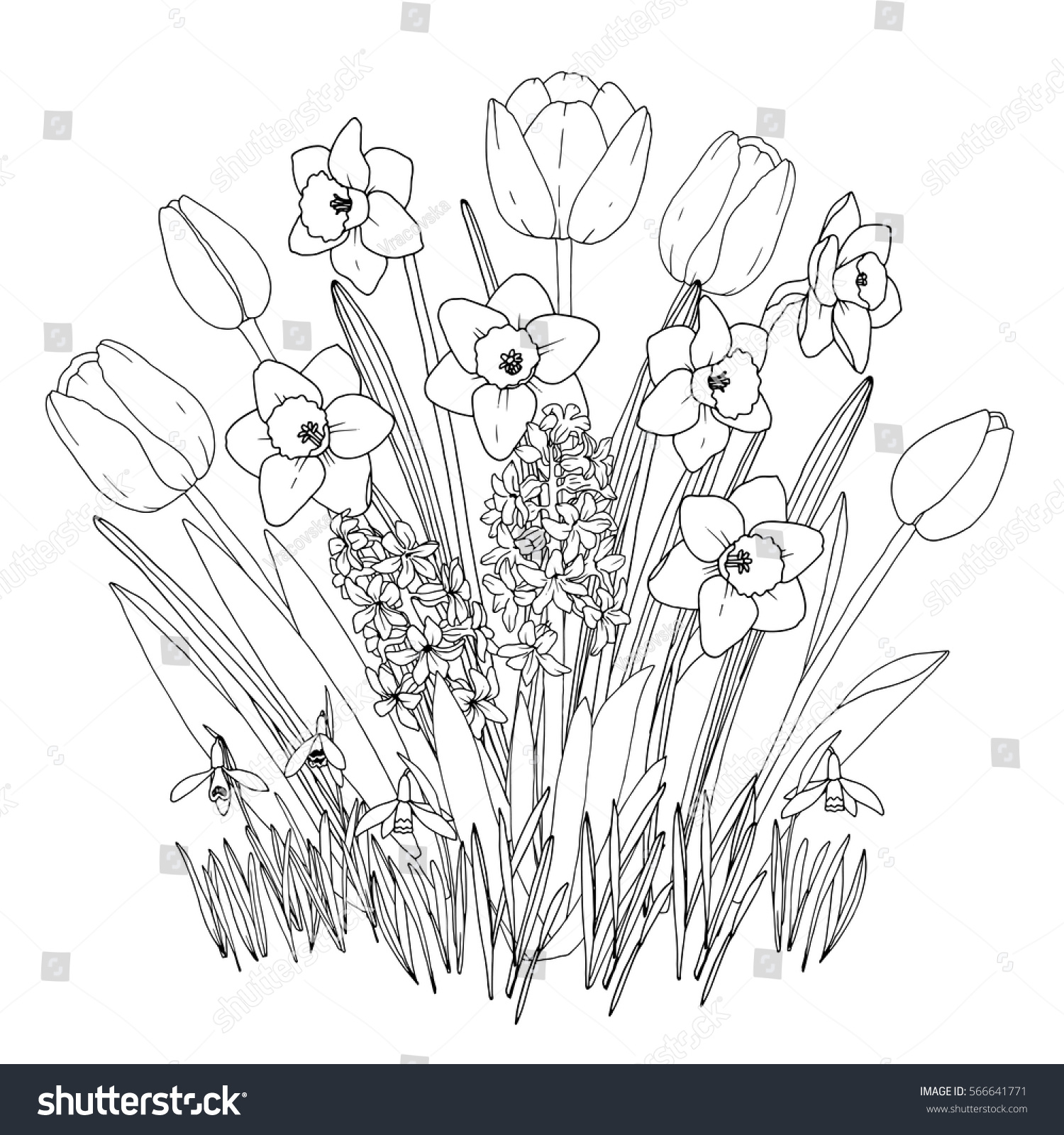 spring garden flowers coloring page hand drawn set with blooming daffodils tulips - Spring Garden Coloring Pages