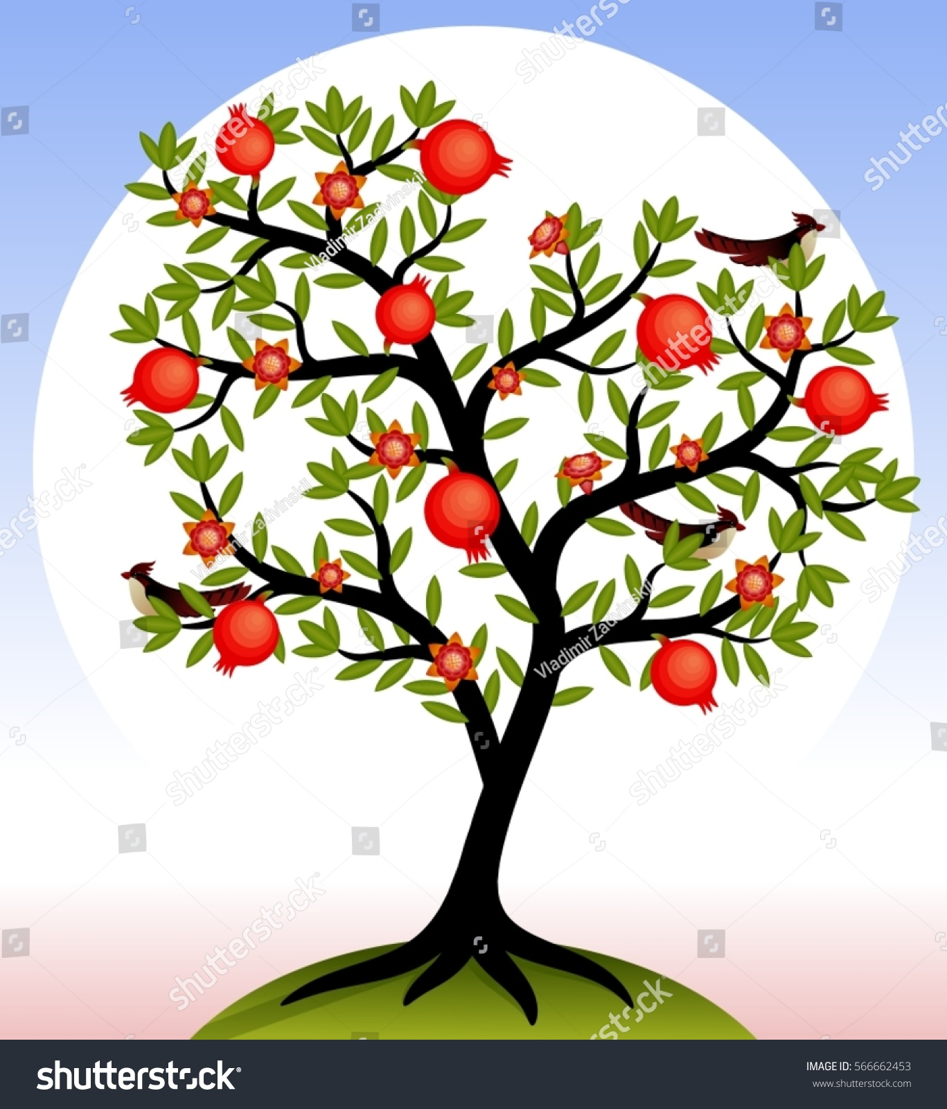 Fruit Tree Pomegranate Tree Fruits Flowers Stock Vector ...