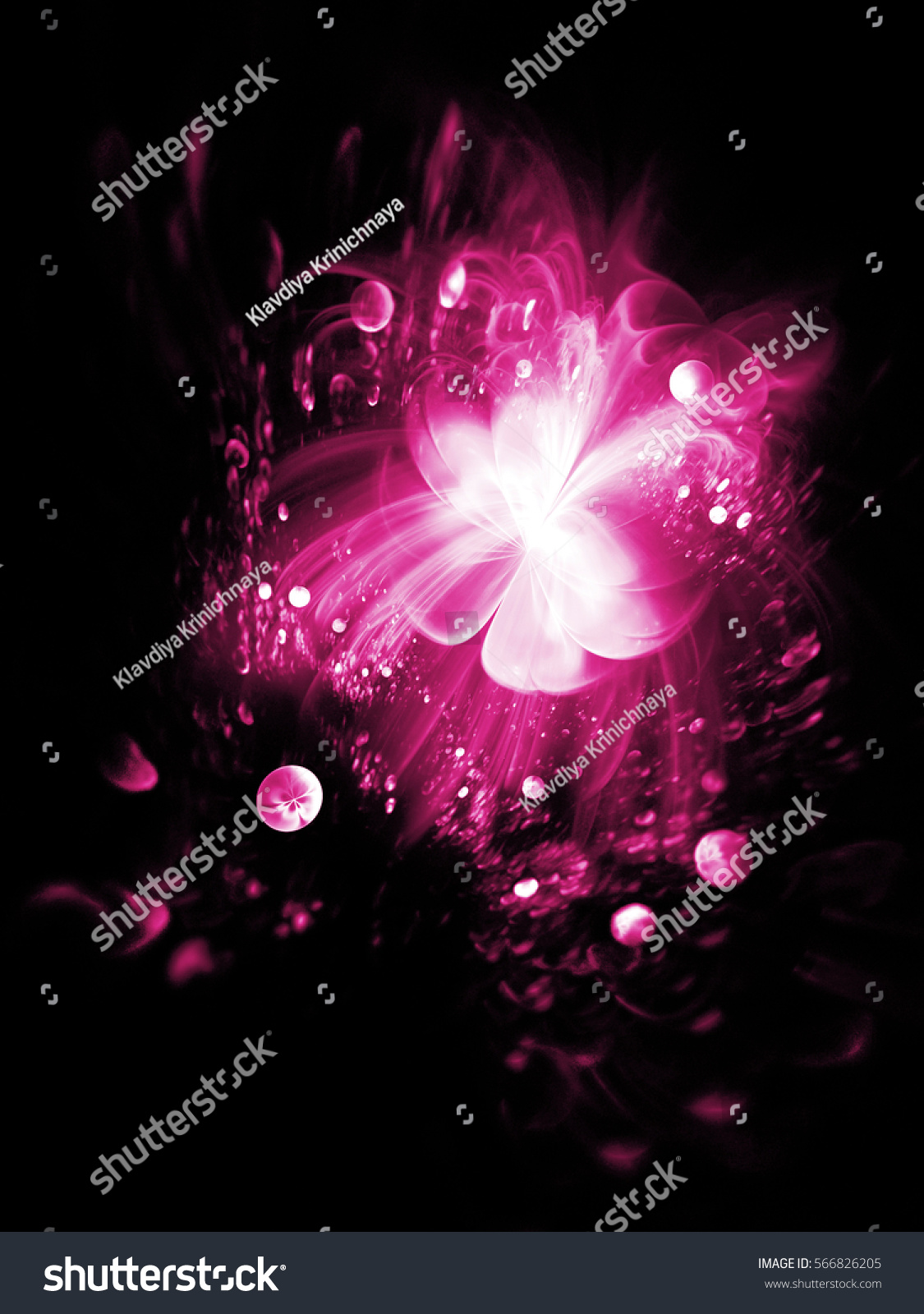 abstract exotic flower on black background stock