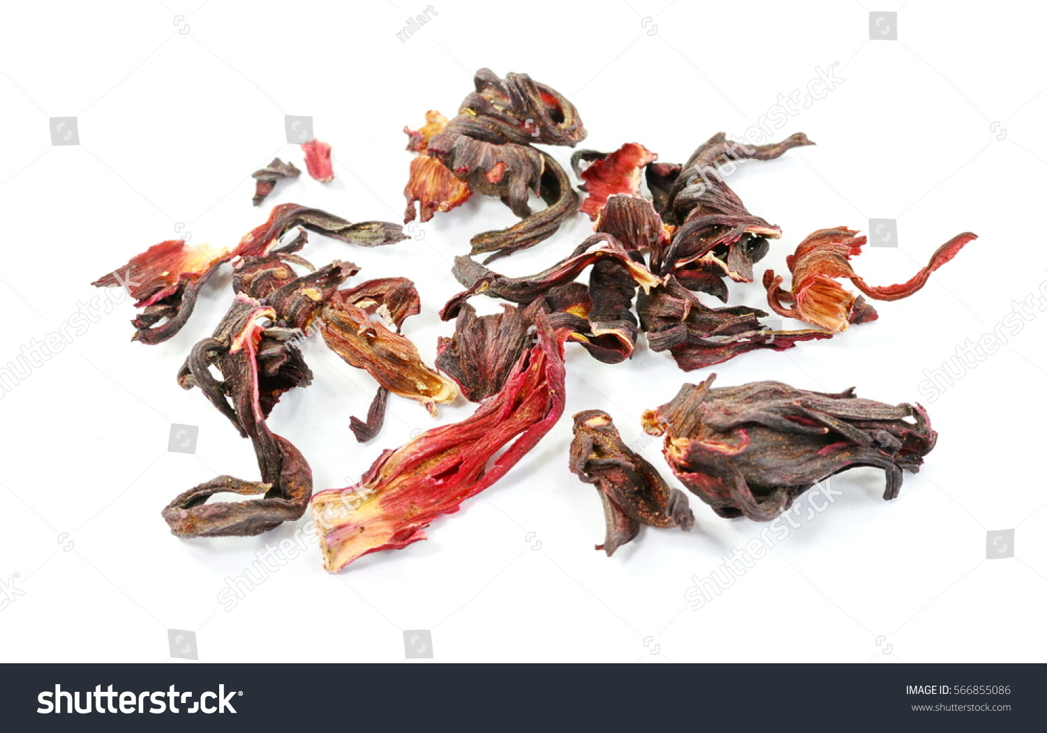 Dried hibiscus flower tea isolated on stock photo royalty free dried hibiscus flower tea isolated on white background izmirmasajfo