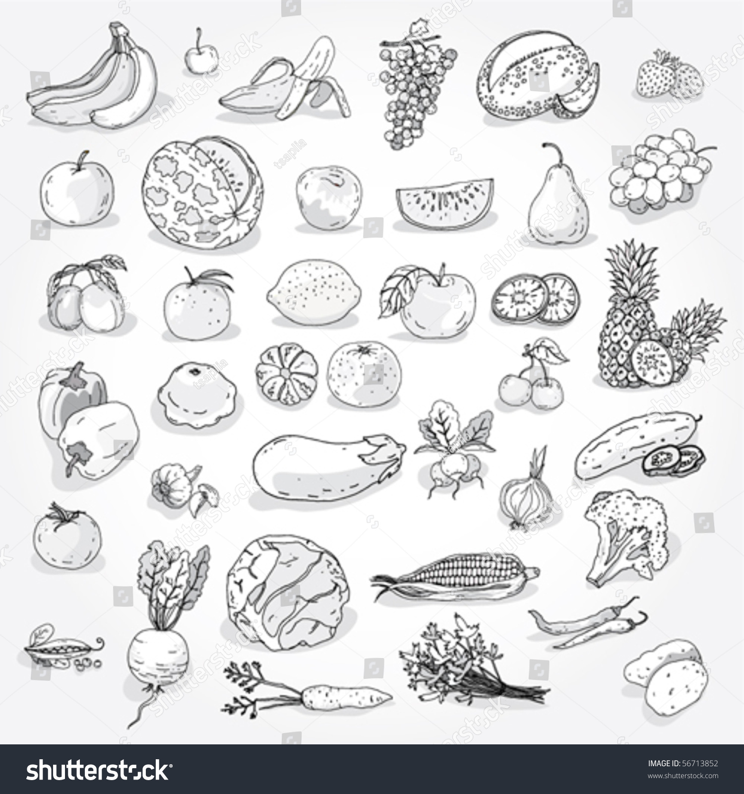hand drawn fruits vegetables outline stock vector 56713852