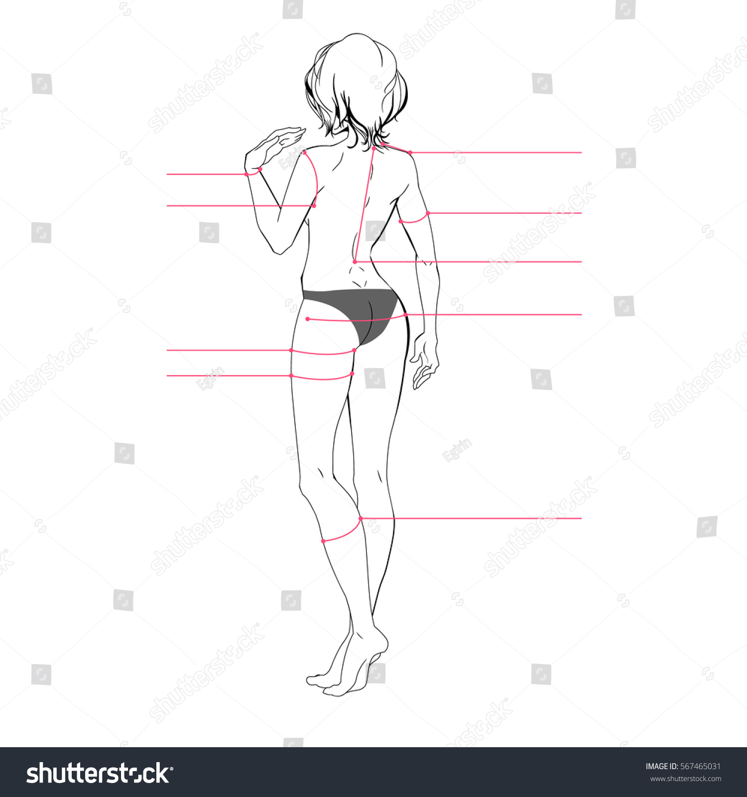 Woman Body Measurement Chart Scheme Measurement Stock Vector ...