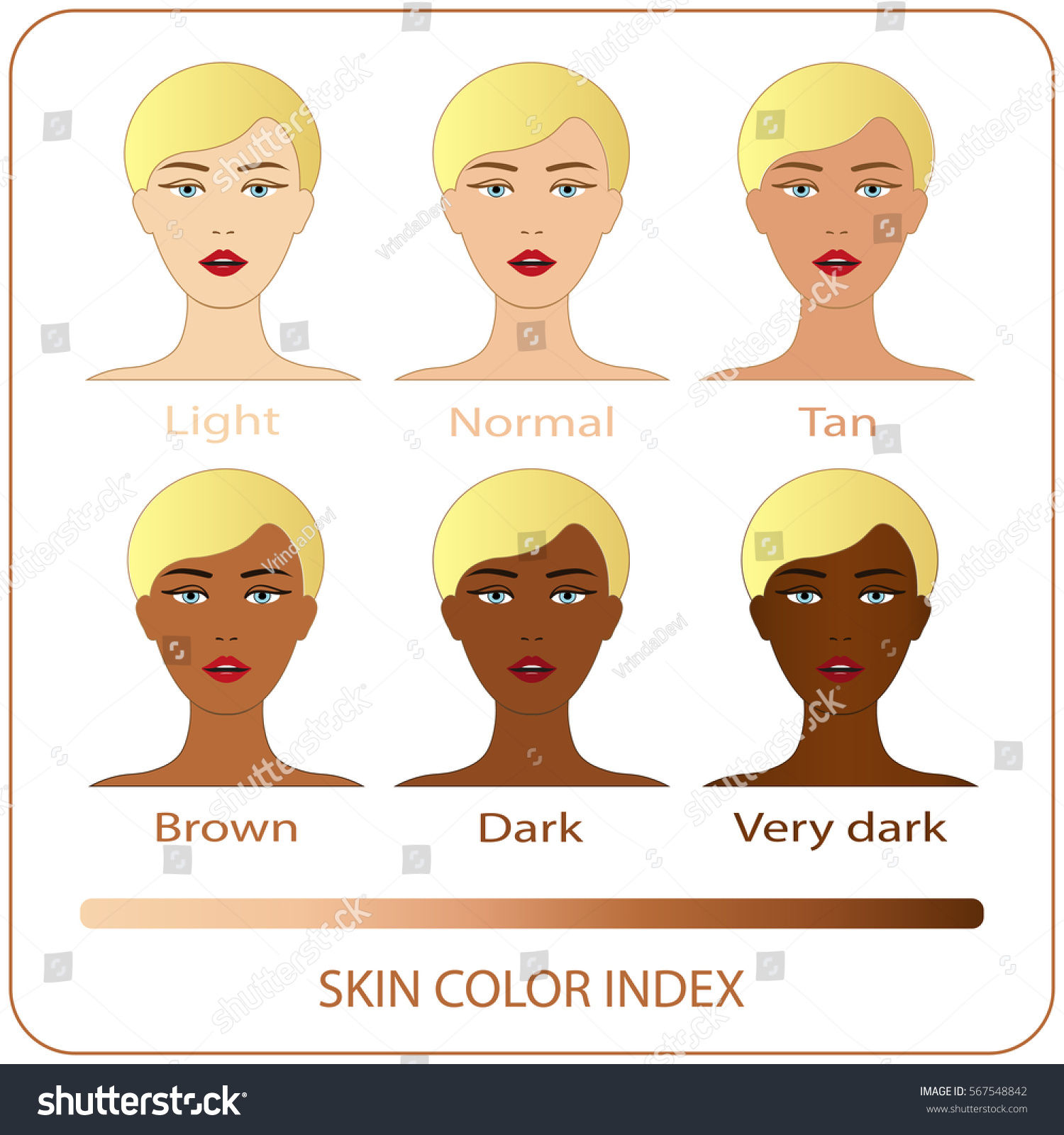 Skin color index infographic vector woman stock vector 567548842 skin color index infographic in vector woman face with different color skin chart of level nvjuhfo Choice Image