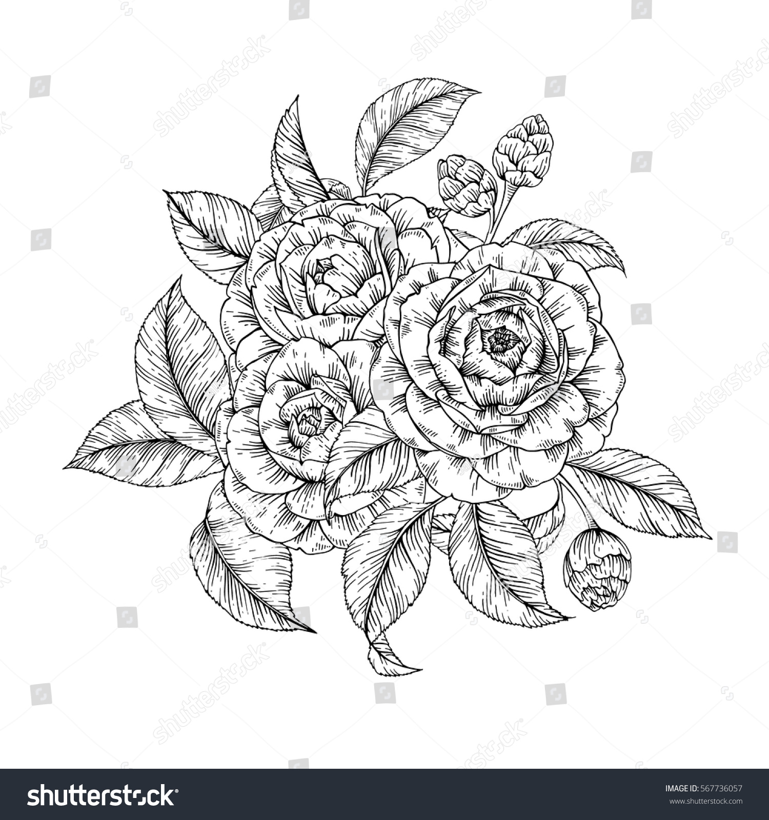 Vector hand drawn bouquet flowers retro stock vector royalty free vector hand drawn bouquet of flowers in retro style floral vintage posy background for print izmirmasajfo