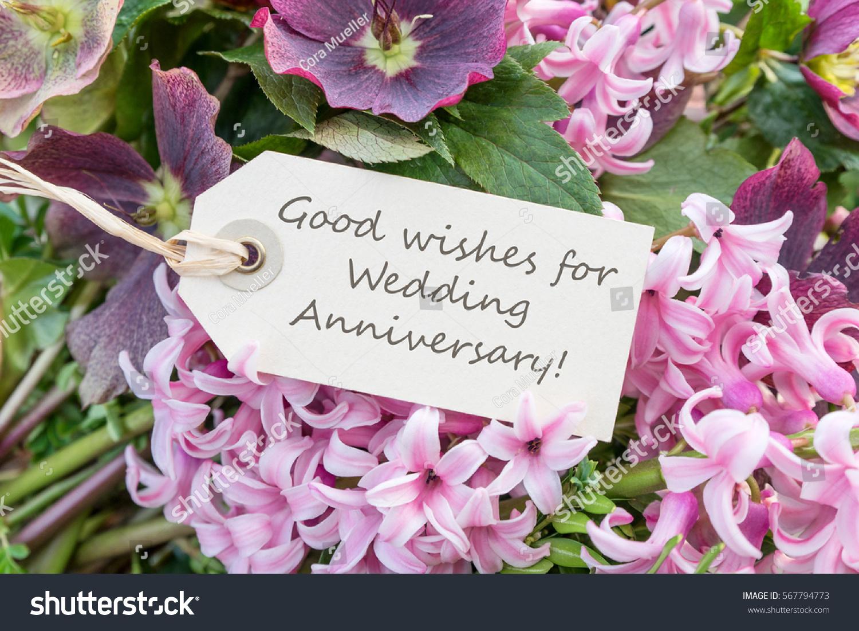 English Greeting Card Hyacinths Wedding Anniversary Stock Photo