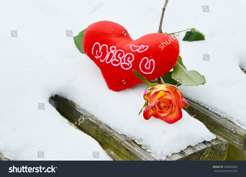 Heart Alphabet Miss U Rose On Stock Photo Edit Now 568466059
