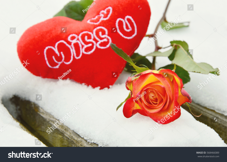 Heart Alphabet Miss U Rose On Stock Photo Edit Now 568466089