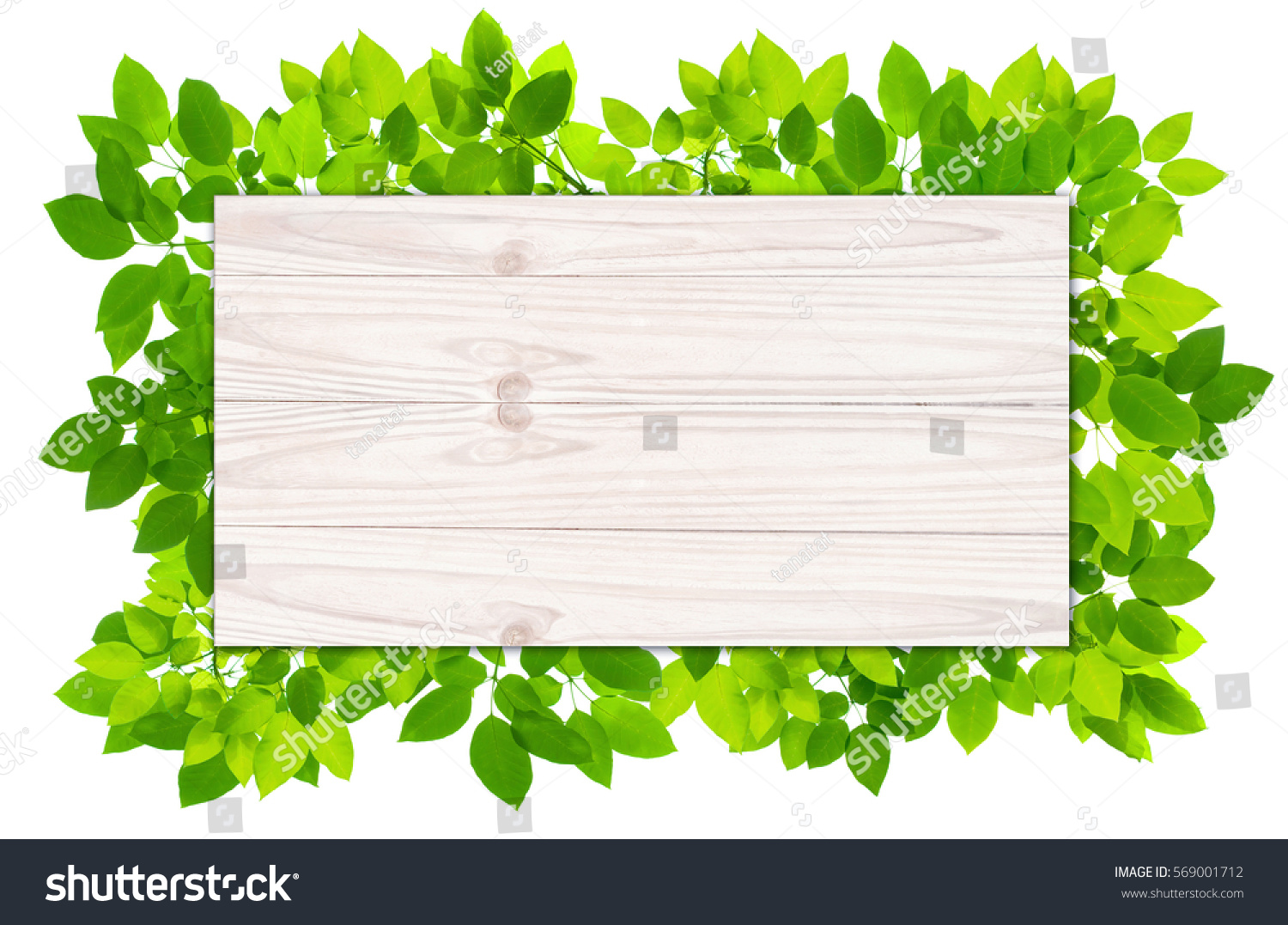 Plank Wood Background Green Leaves Frame Stock Photo (Edit Now ...